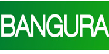 Bangura Solutions Limited  logo